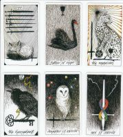 The Wild Unknown Tarot image 20